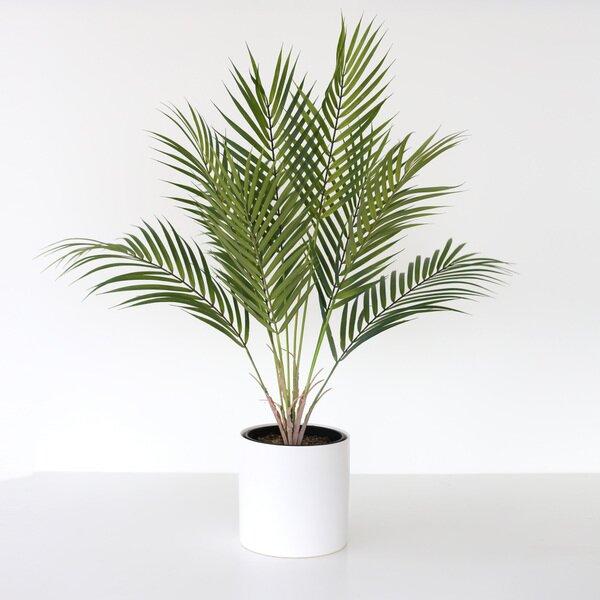 Meda Blooms Artificial Areca Palm Plant In Ceramic Vase Reviews