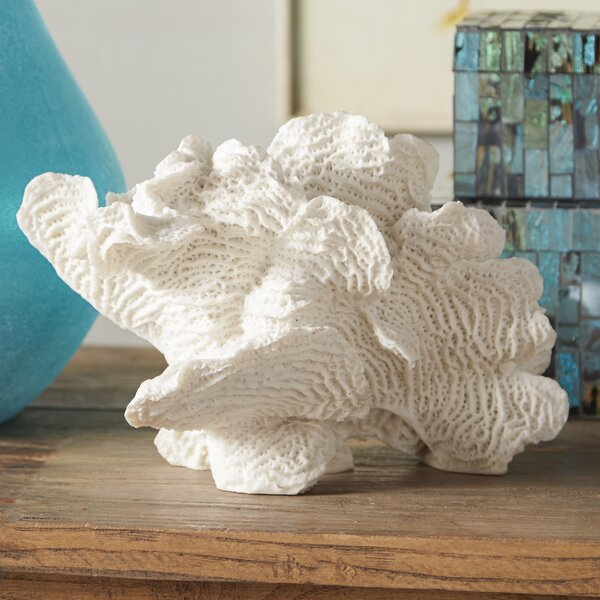 Beachcrest Home Decorative Palancar Coral Table D 233 Cor