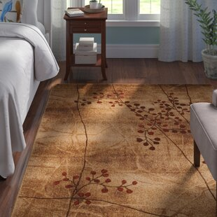 Small Throw Rugs Wayfair