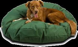 Pillow Dog Beds