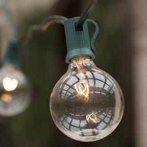 50-Light Globe String Lights