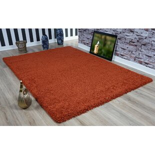 Oxford Terra Cotta Area Rug by Castleton Home