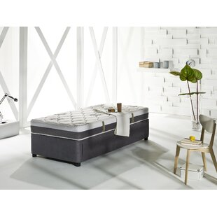 Unknow Four Seasons Twin Xl Daybed With Trundle And Mattress