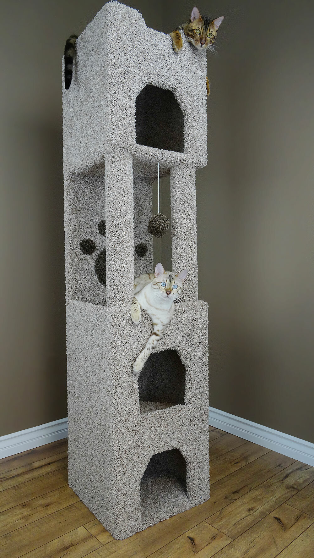 New Cat Condos 71 Quot Premier Cat Tree Amp Reviews Wayfair