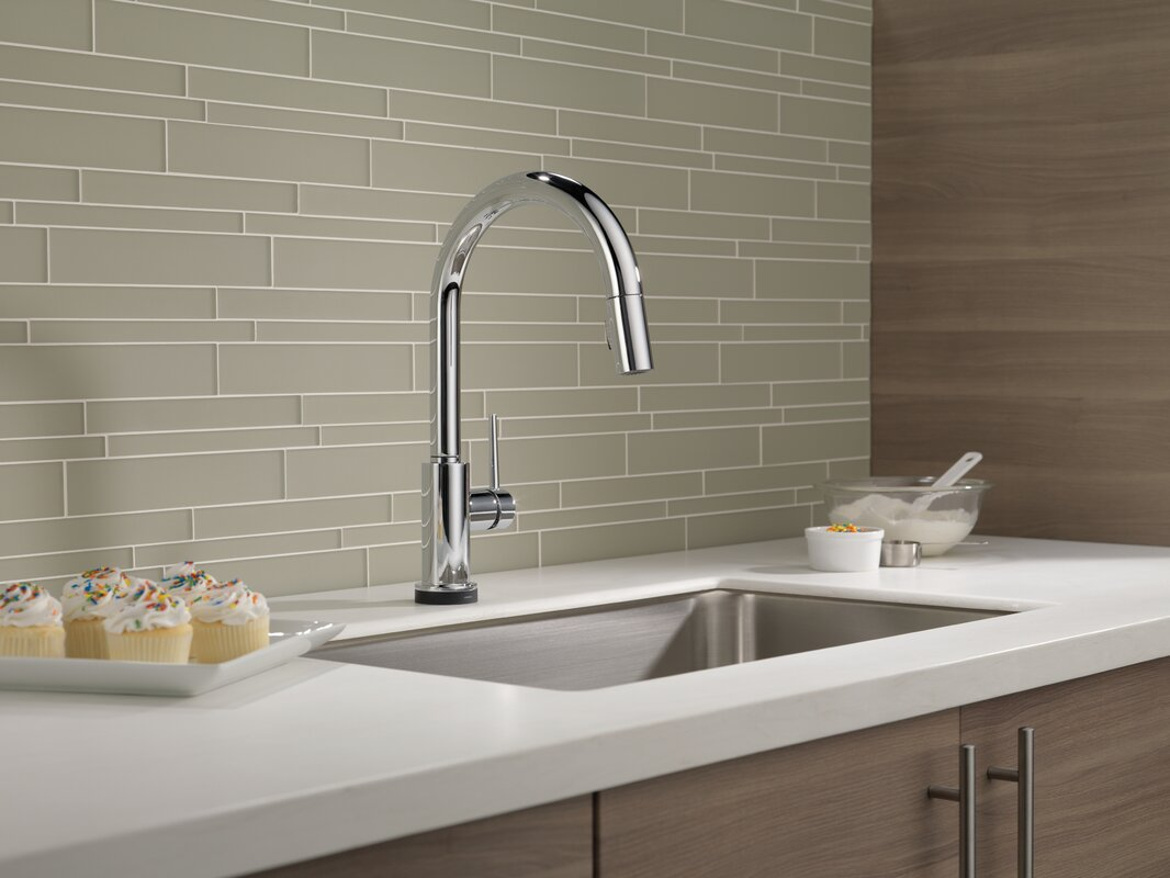 Trinsic Single Handle Standard Kitchen Faucet In Chrome