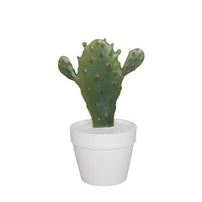 Bungalow Rose Decorative Resin Cactus