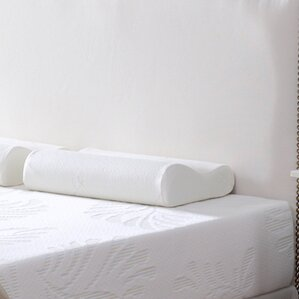 Contour Botanic Origin Memory Foam Queen Pillow by Alwyn Home