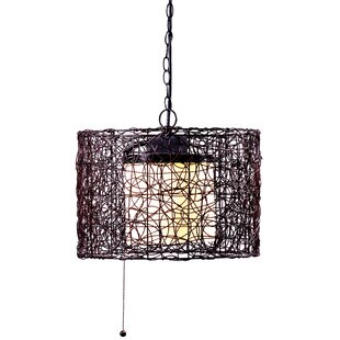 Plug in outdoor hanging light wayfair chianna 1 light outdoor pendant mozeypictures Gallery