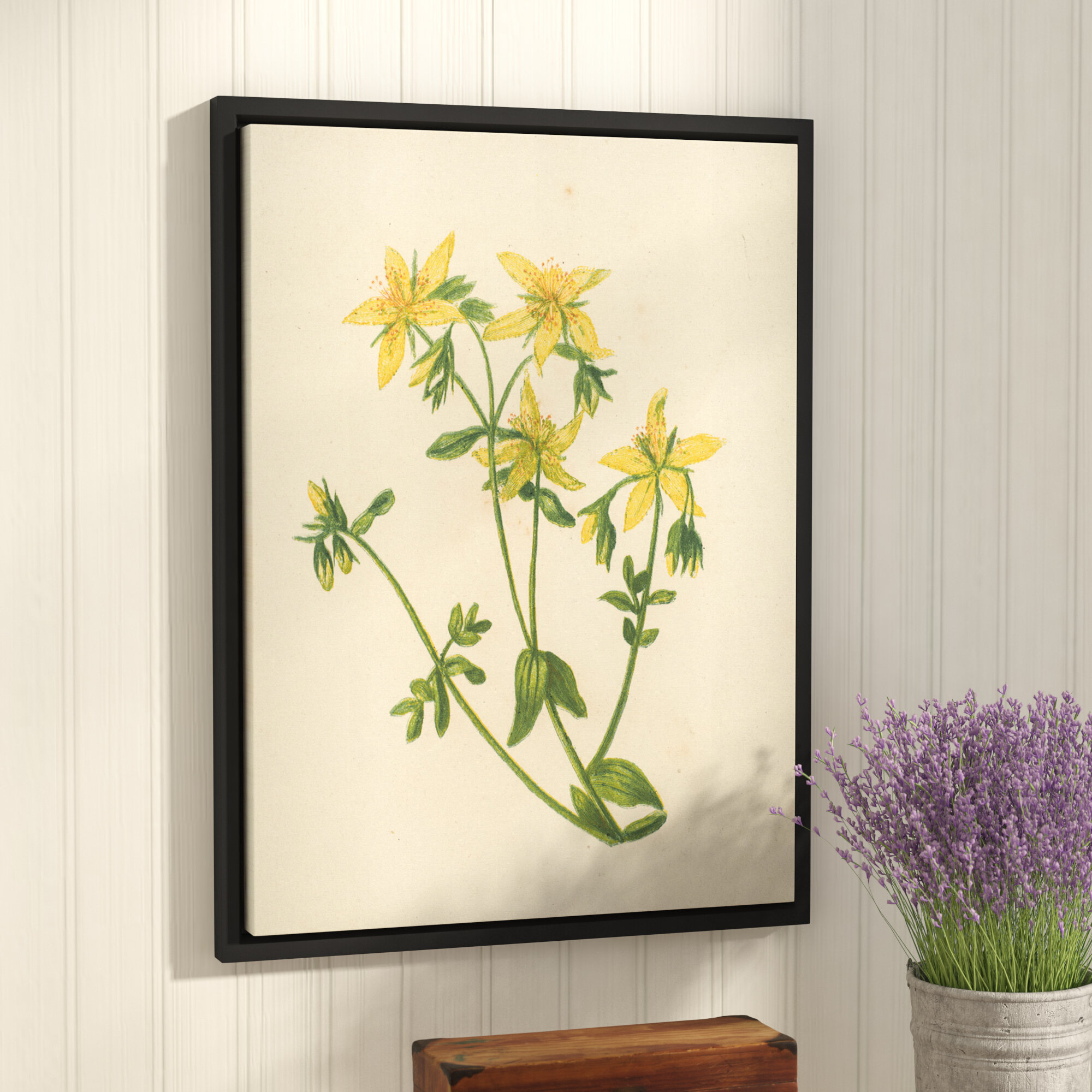 Laurel Foundry Modern Farmhouse Perforated St Johns Wort Graphic Art ...