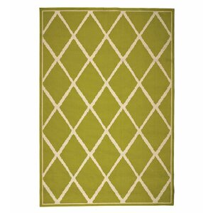 Indoor/Outdoor Green Area Rug