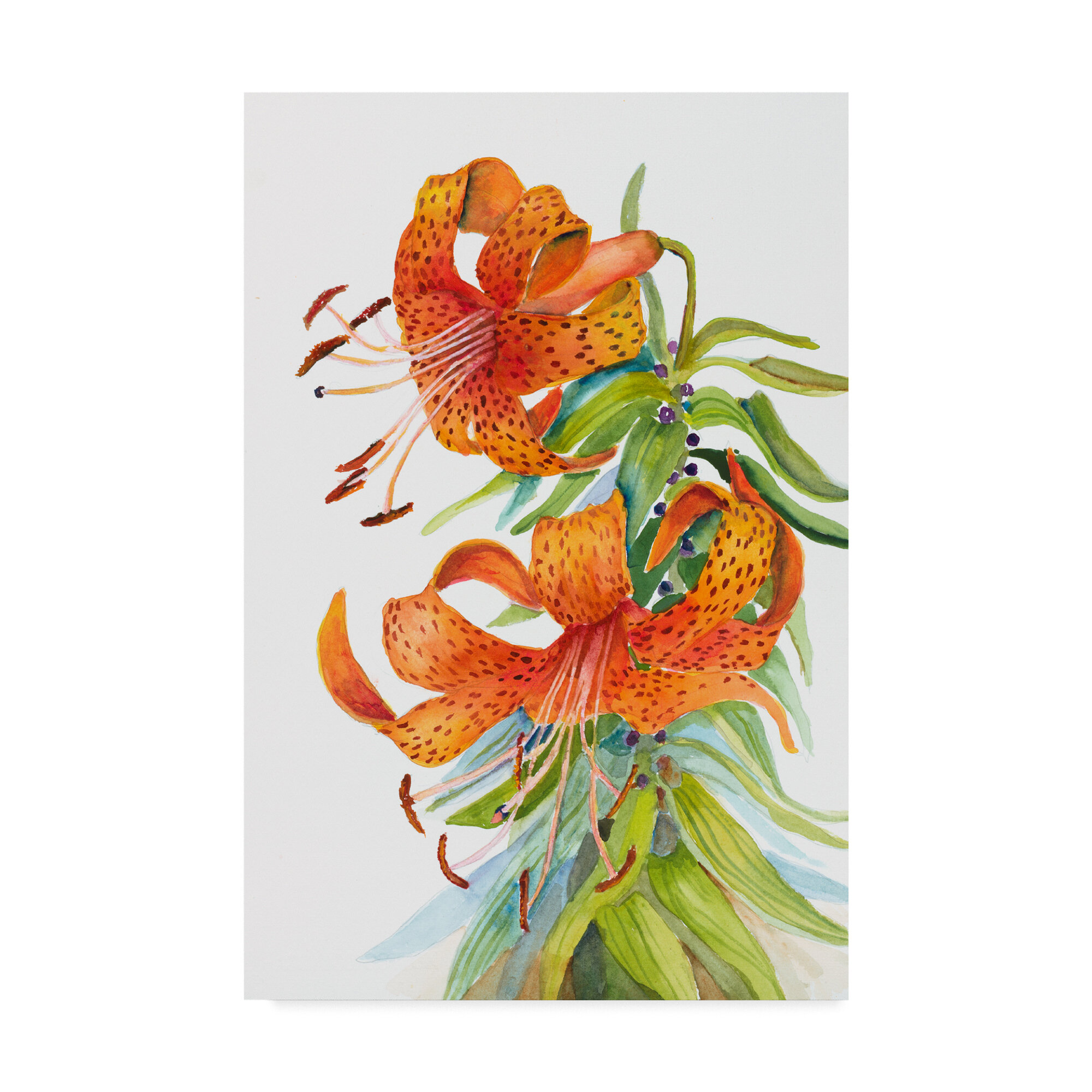 Trademark Art Tiger Lilies Graphic Art Print On Wrapped Canvas