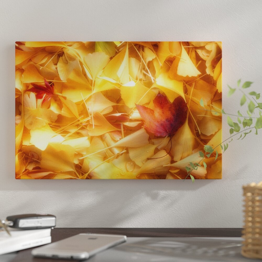 East Urban Home \'Fallen Ginkgo Leaves\' Photographic Print on Canvas ...