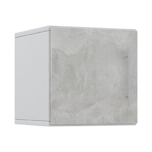 Essex 31 x 34cm Wall Mounted Cabinet by Metro Lane