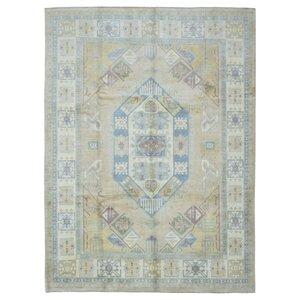 Abbotsford Oriental Hand Woven Wool Beige Area Rug