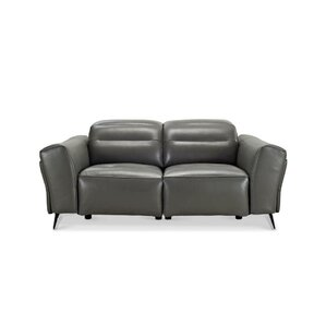 Paille Leather Reclining Loveseat by Orren Ellis