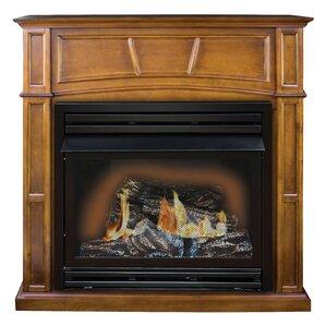 Savannah Full Size Wall Mount Gas Fireplace by KozyWorld