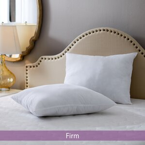 Wayfair Basics Firm Pillow (Set of 2) by Wayfair Basics?