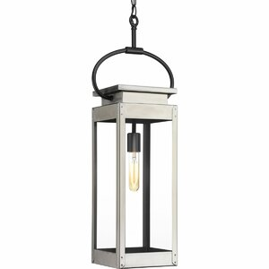 Jimena 1-Light Outdoor Hanging Lantern