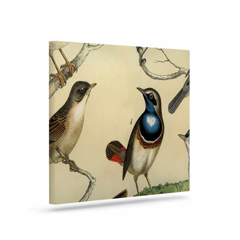East Urban Home \'Vintage Birds\' Graphic Art Print on Canvas | Wayfair