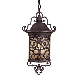Chelesa Road 1-Light Outdoor Hanging Lantern