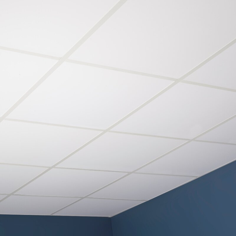Genesis 2 Ft X 2 Ft Drop In Ceiling Tile In White Wayfair
