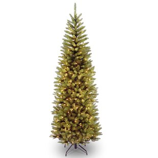 6.5\u0027 Green Fir Artificial Christmas Tree with 250 Clear/White Lights Trees You\u0027ll Love | Wayfair