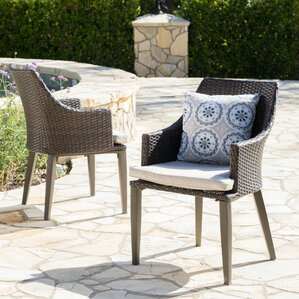Backlund Wicker Patio Dining Chair With Cushion (Set Of 2)