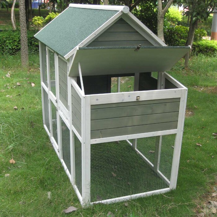 Coops And Feathers Superior Hen House With Free Range Door