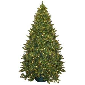 httpssecureimg2 fgwfcdncomim29444122resiz - 14 Christmas Tree