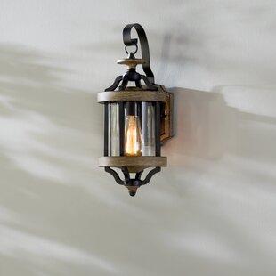 Elisabetta 1 Light Outdoor Wall Lantern