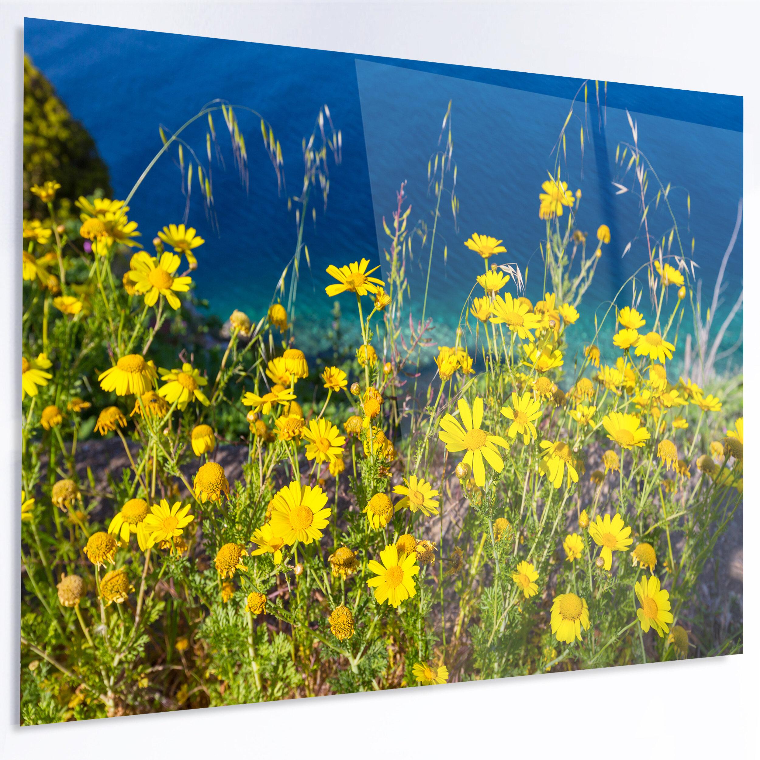 Designart Wild Yellow Flowers Over Sea Coast Photographic Print On