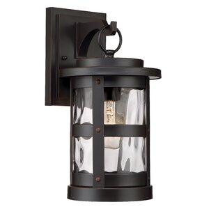 Terraze 1-Light Outdoor Wall Lantern