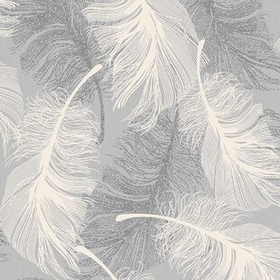 Search Results For Feather Wallpaper