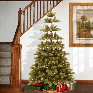 National Tree Carolina Pine Wayfair - Wispy Willow Christmas Tree
