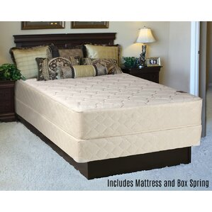 mattress and box spring. orthopedic back support long lasting 10\ mattress and box spring