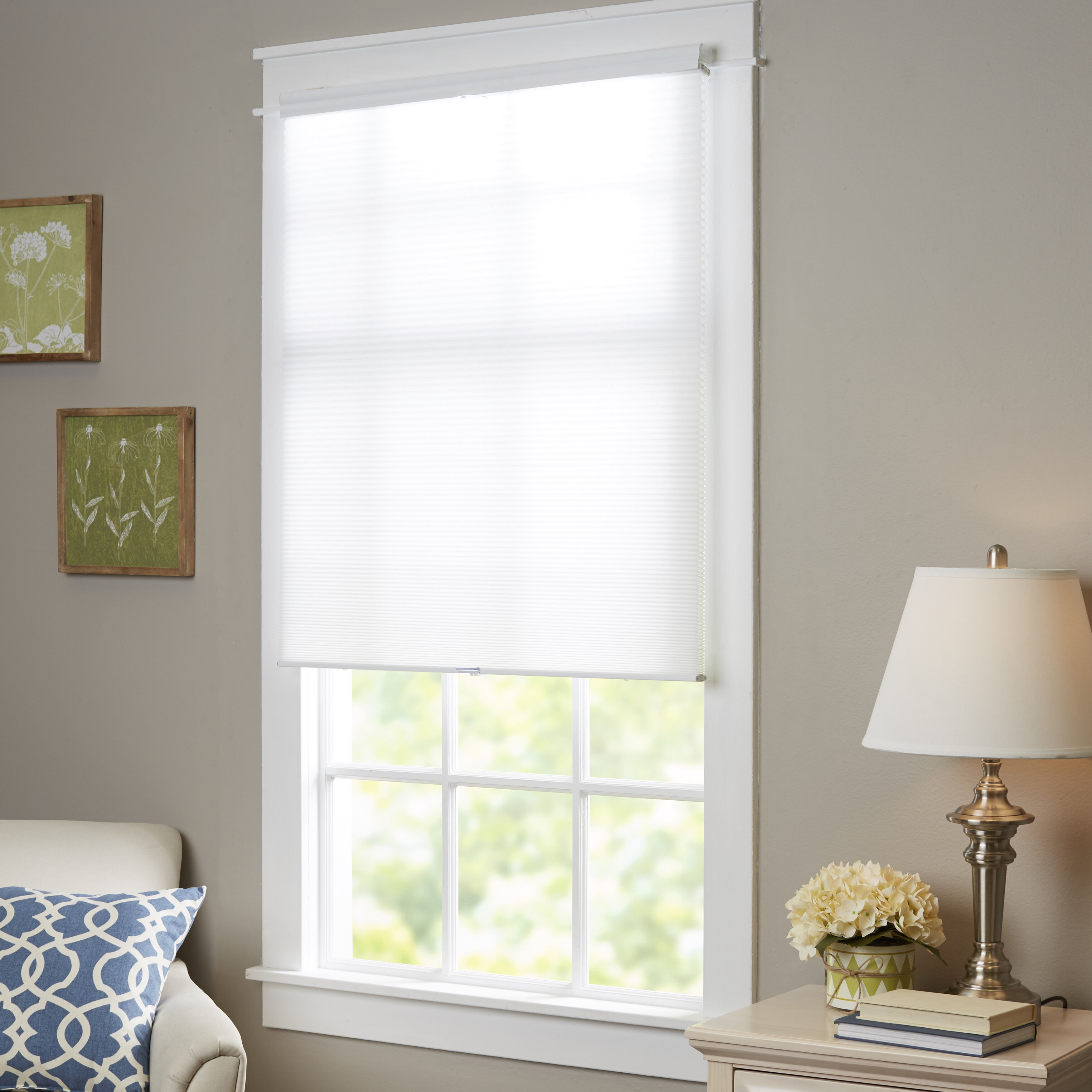 Wayfair Basics Top Down Bottom Up Cordless Honeycomb Cellular Shade Reviews Ca