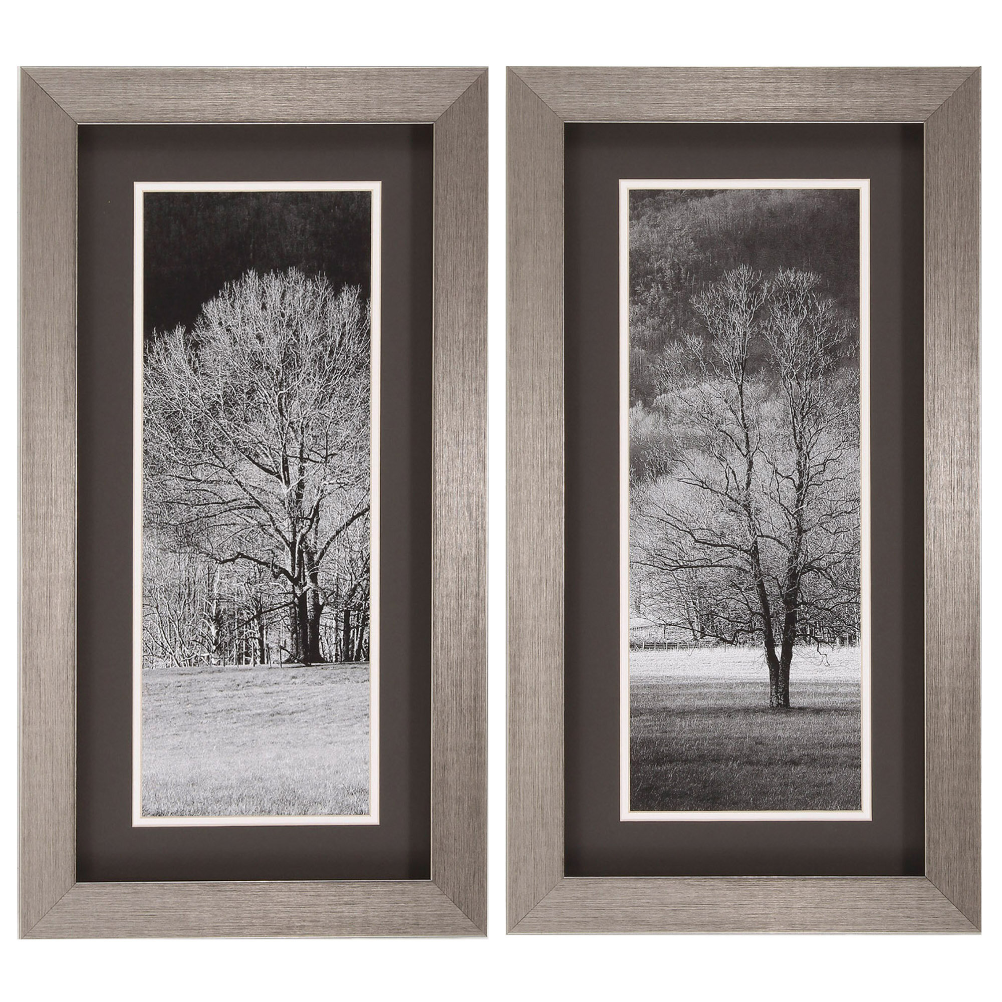 Three Posts Black And White Trees 2 Piece Framed Photographic Print Set Reviews Wayfair
