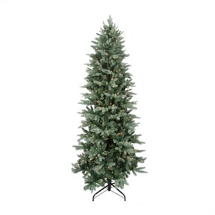 12 washington frasier fir slim artificial christmas tree with clear lights