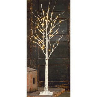 Indoor Decorative Trees | Wayfair