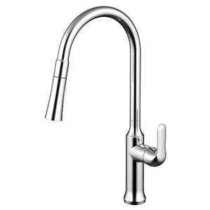 Daweier Single Handle Pull Out Kitchen Faucet with 2 Spray Settings