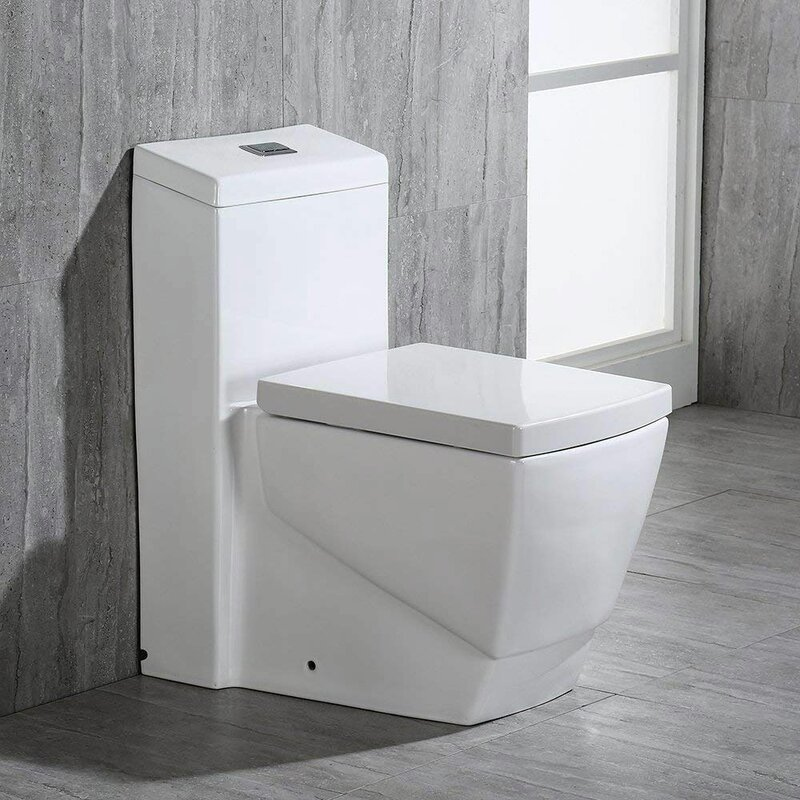 Dual Flush Elongated One-Piece Toilet (Seat Included)