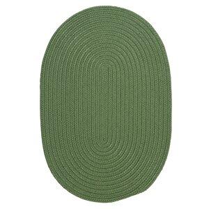 Mcintyre Moss Green Indoor/Outdoor Area Rug