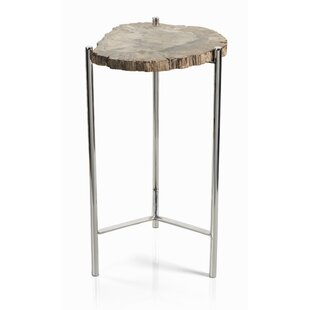 Belsay Petrified Wood Tree Stump End Table