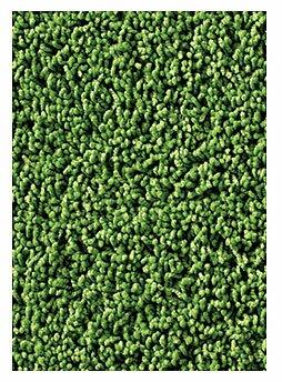 carpets for kids soft solids kidply grass green area rug u0026 reviews wayfair