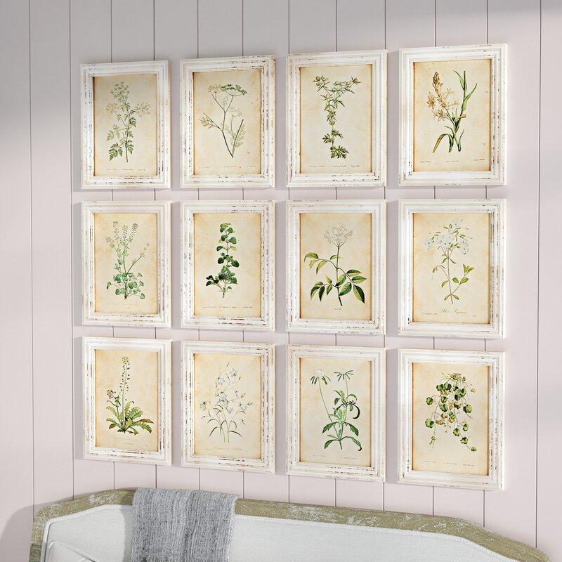 One Allium Way Wild Flower Botanical 12 Piece Framed Graphic Art Set