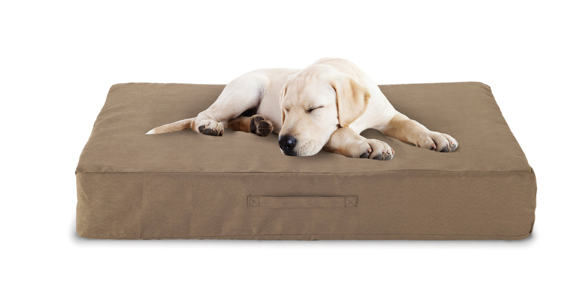 memory orthopedic bed products large lounge extra sofa brown foam dog x