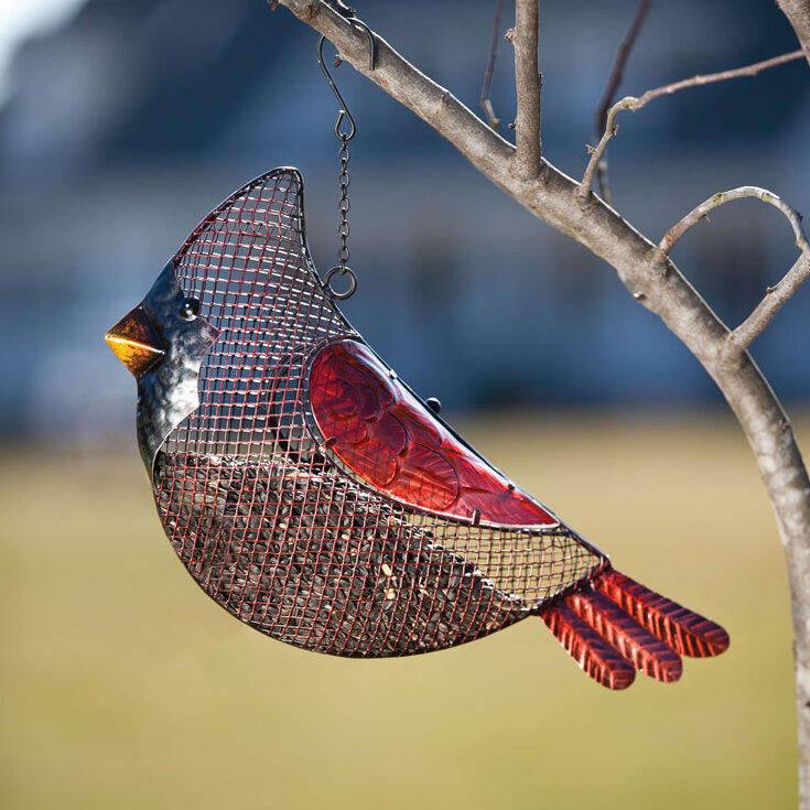 Evergreen Enterprises, Inc Cardinal Seed Decorative Bird Feeder U0026 Reviews |  Wayfair