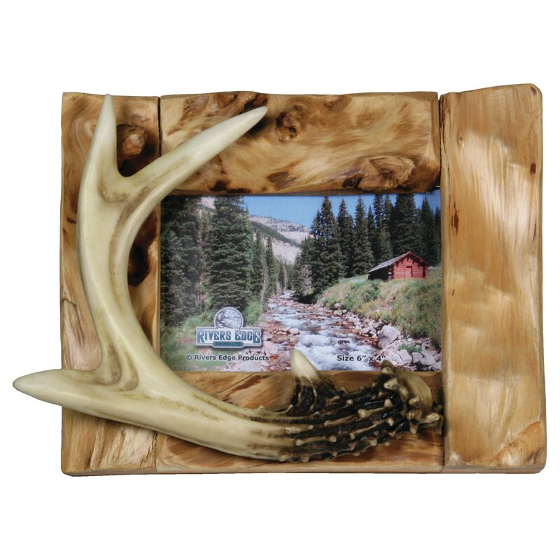 Deer Antler Frames | Wayfair