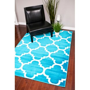 Turquoise Indoor Outdoor Area Rug