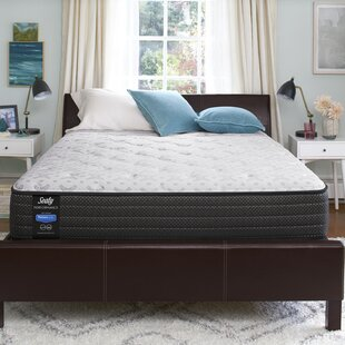 Response Performance 12 Cushion Firm Mattress And Box Spring By Sealy